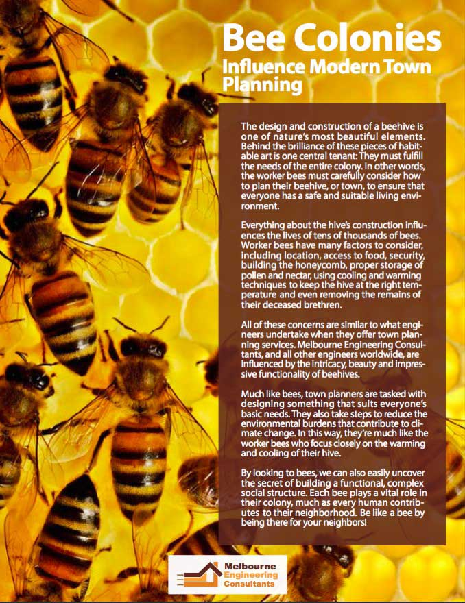 Bee Colonies Influence Modern Town Planning